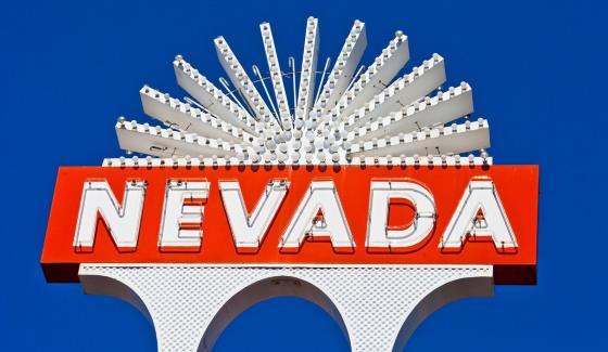 Обсуждение статуса фэнтези-спорта в штате Невада прошло на заседании Комитета по вопросам азартных игр (Nevada Gaming Policy Committee ― NGPC).