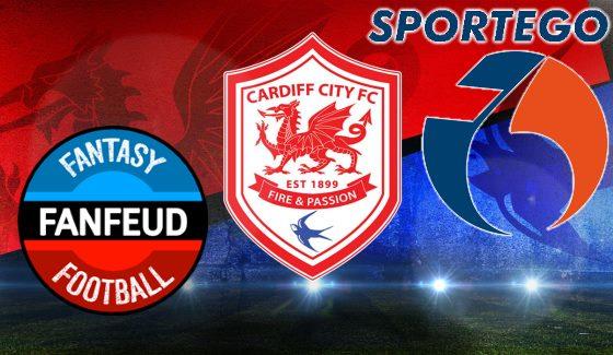 Руководство компании Sportego сообщило о партнерском договоре с футбольным клубом «Кардифф Сити» (Cardiff City FC).